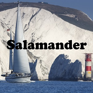 The Salamander Sailing Adventure Lymington - Nauticfan the maritime portal